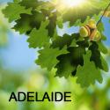 unleashing-appreciative-intelligence-adelaid-1418107966-png